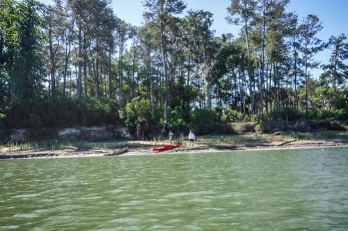 May River Paddling with Lowcountry Unfiltered-46