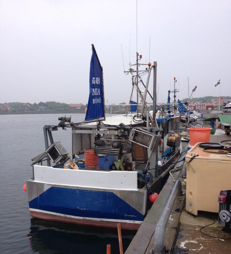 Hönö-Röd_maj2016 - 16