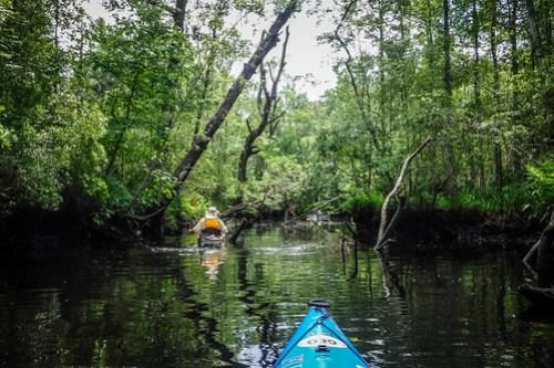 New River Paddling-33