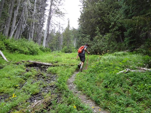 Lost Pass Primitive Trail