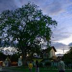 14 Viajefilos en Sri Lanka. Yala 58