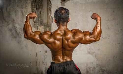 bodybuilding championship 2015  bodybuilding championship 2015 16563215838 51d529febf