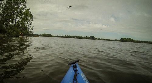 Lake Marion Plantation Islands-059