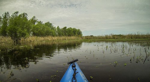 Lake Marion Plantation Islands-055