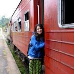 13 Viajefilos en Sri Lanka. Tren a Ella 45