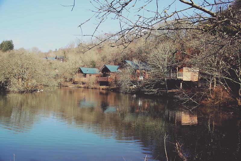 Forest Holidays, Deerpark