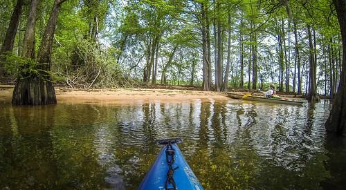 Lake Marion Plantation Islands-19