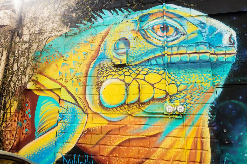 Street Art - St Petes 18