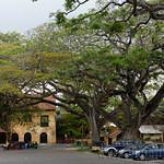 15 Viajefilos en Sri Lanka. Galle 08