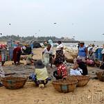 01 Viajefilos en Sri Lanka. Negombo 13