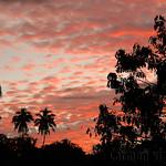 14 Viajefilos en Sri Lanka. Yala 57