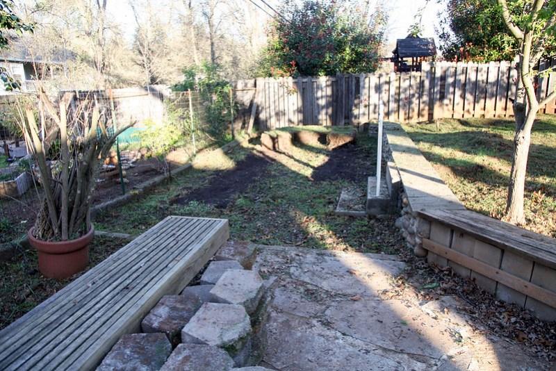 Backyard - Day 1
