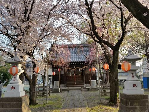 4月3日の千形神社2