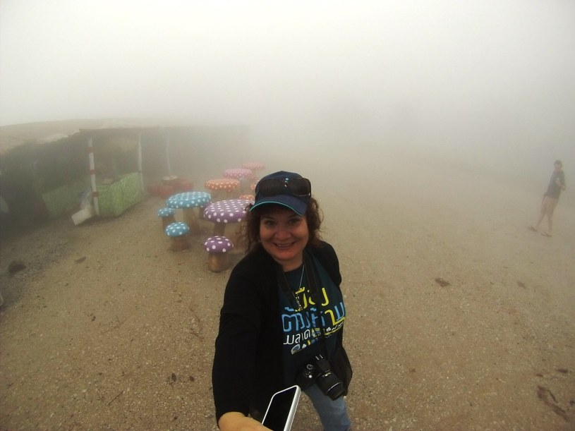Phu Rea National Park in the Fog -