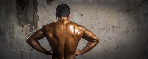 bodybuilding championship 2015  bodybuilding championship 2015 16565228319 c1dd311de5