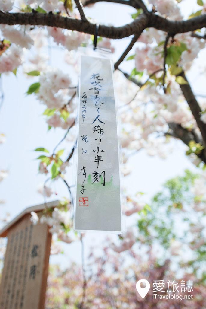 大阪造币局 樱花 20