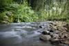 Waiahole Valley, Hawaii