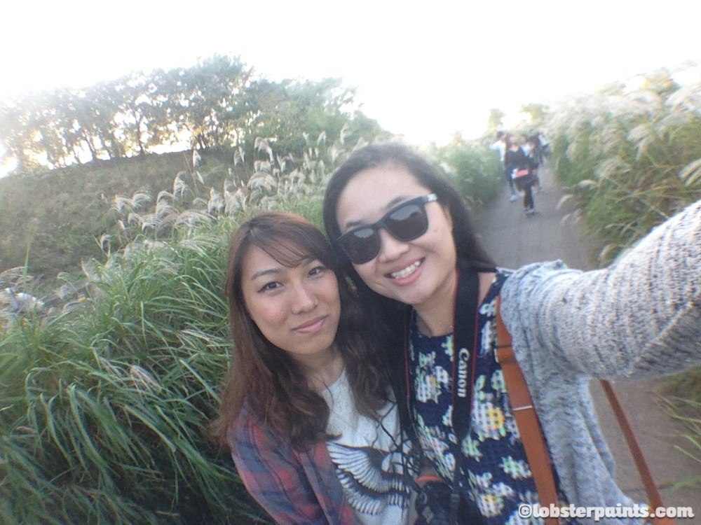 4 Oct 2014: Yeouido Hangang Park | Seoul, South Korea