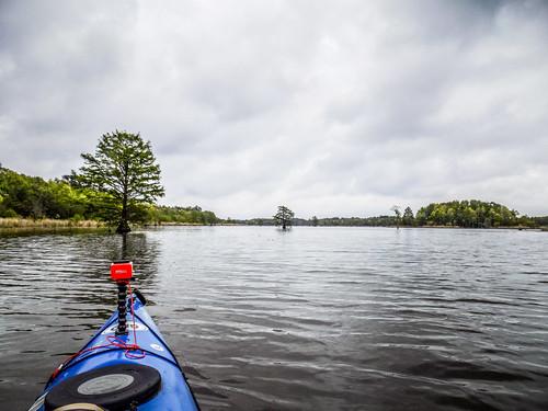 Lake Marion Plantation Islands-018