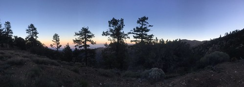 PCT Day 20