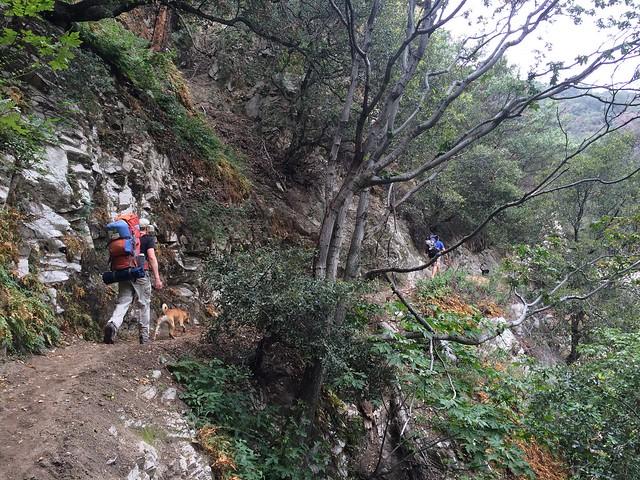 trail_sprucegrove