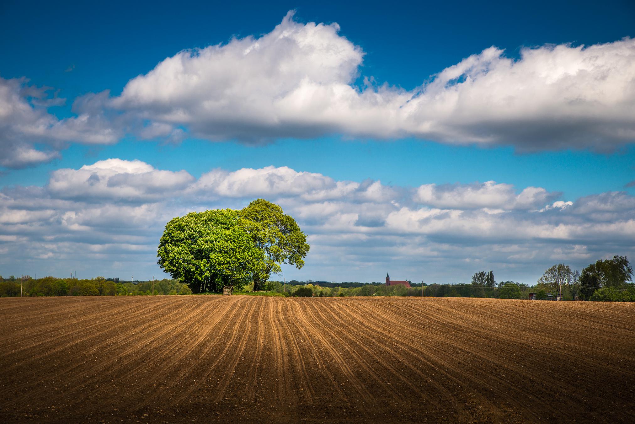 Brandenburg Landschaft