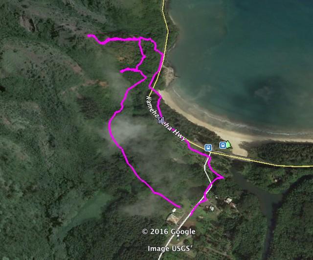 Google Earth Image of Kapa'ele'ele Trail