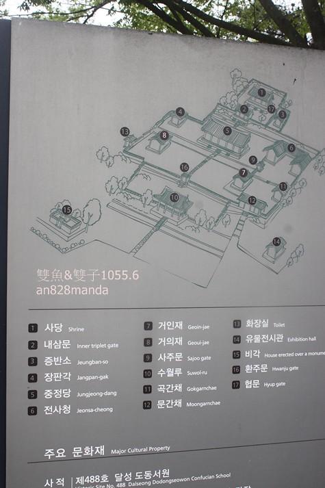 窺探大邱的歷史之美道東書院擁有400年壯觀銀杏樹 @ 安妹趣吃趣玩親子旅行趣 :: 痞客邦