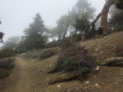 PCT Day 30
