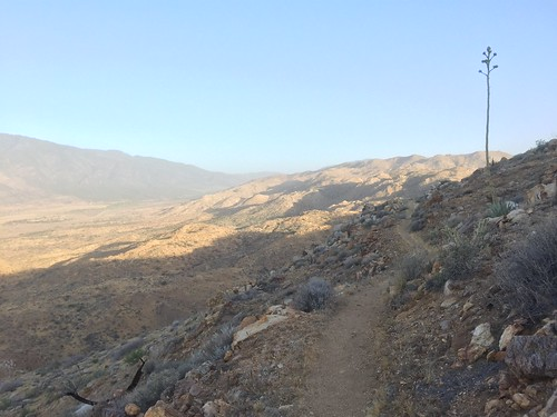 PCT Day 8