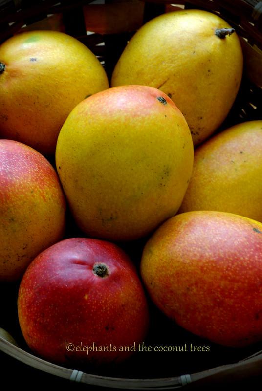 Best mango recipe