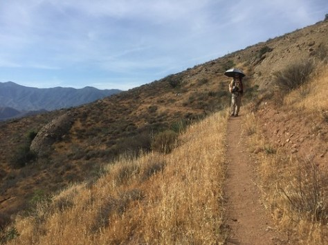 PCT Day 34