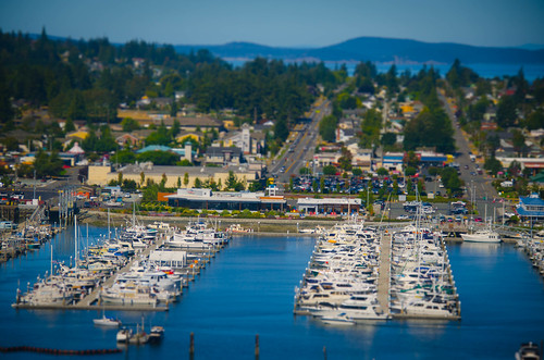 Anacortes from Cap Sante-007
