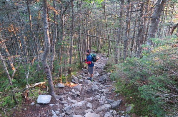 Franconia Ridge Trail Near Liberty