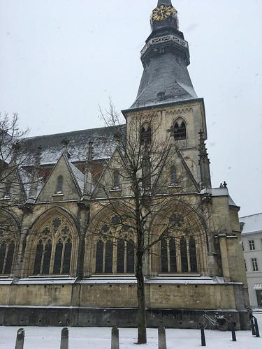 Nieve en Hasselt