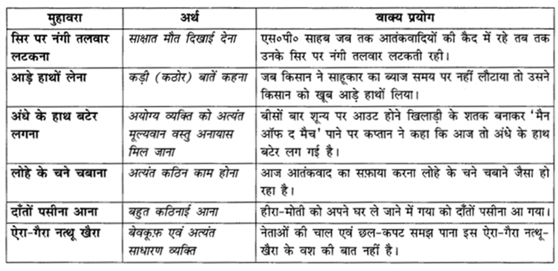NCERT Solutions for Class 10 Hindi Sparsh Chapter 10 Q2