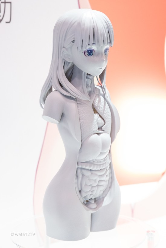 [WF2019W] Beautiful body model (F) (04)