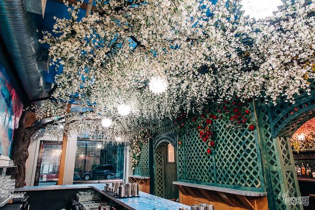 Cherry Blossom Bar 2019-9
