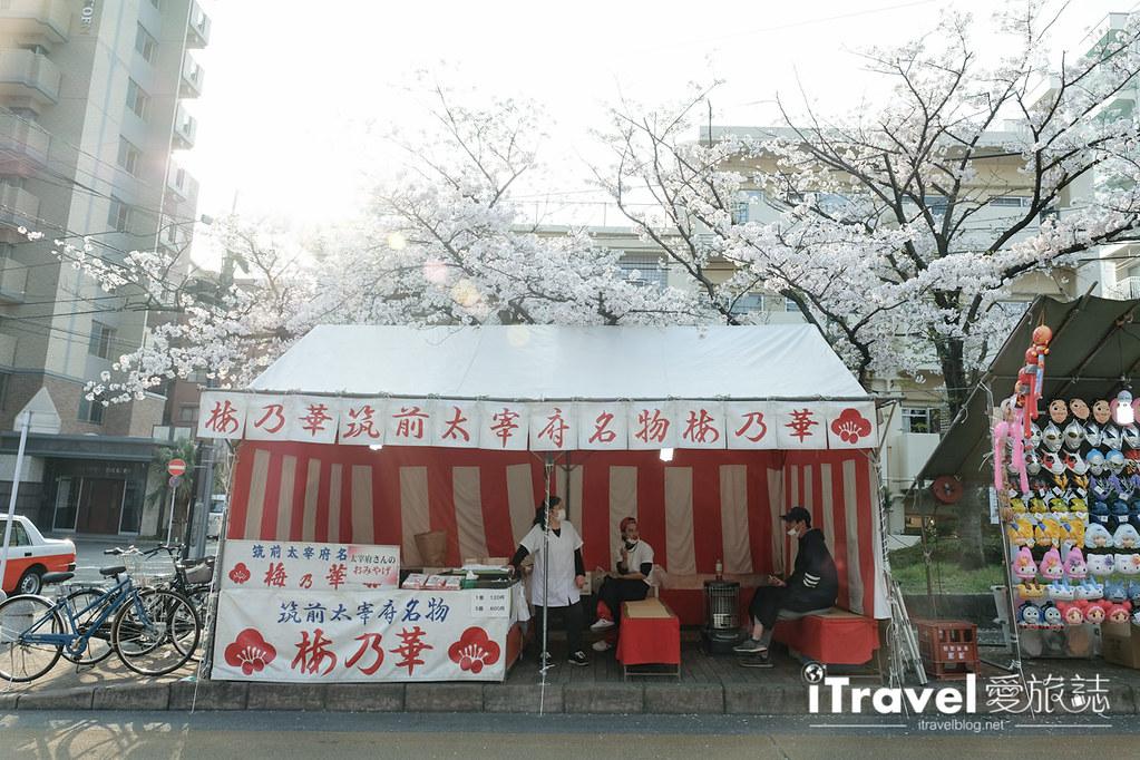 福岡賞櫻景點 西公園Nishi Park (5)