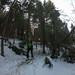 Hochälpele 2019 02 26