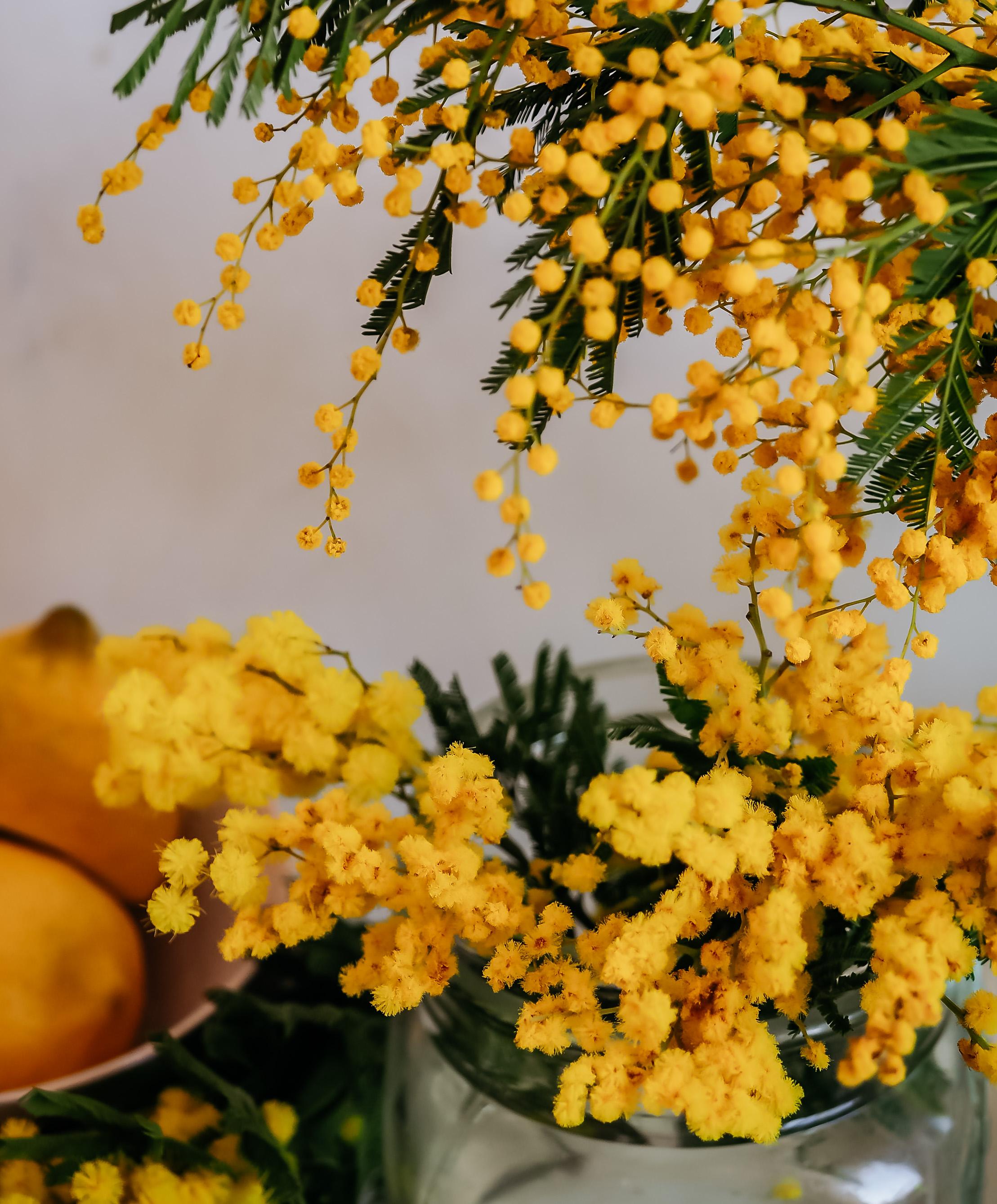 pääsiäisruoka kasvis