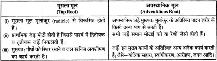 RBSE Solutions for Class 9 Science Chapter 8 Vital activities of living 37