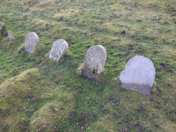 Sheepdog Graves, Thornhill Farm