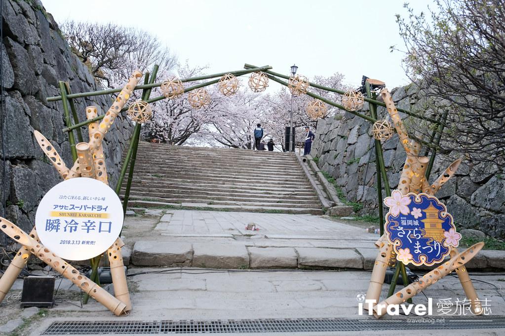 賞櫻景點 福岡城夜櫻 (4)
