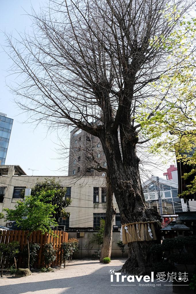 福岡賞櫻景點 櫛田神社 (32)
