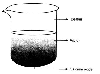 RBSE Solutions for Class 10 Science Chapter 6 Chemical Reaction and Catalyst AL5