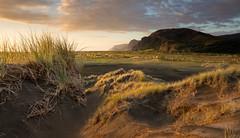 Shifting sands of Whatipu