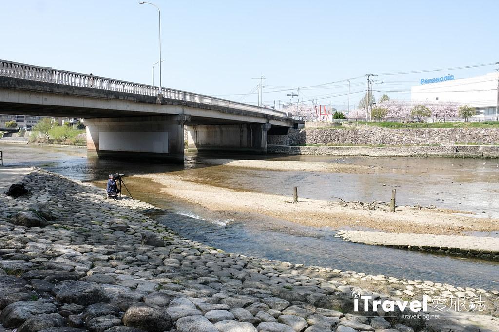 福岡賞櫻景點 美野島南公園 (58)