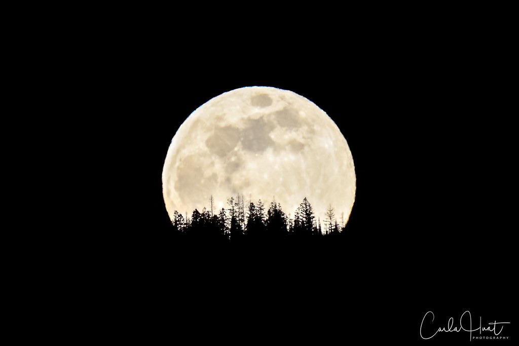Full moon, March 20, 2019, shot from my house, Vernon, BC