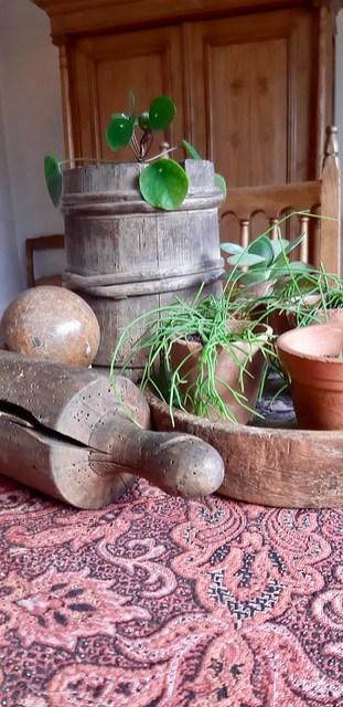 Olijfbak deegroller pepermuntplant